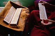 Elder nun reciting prayers in her room - Geden Choeling nunnery, Dharamsala, India, 2010