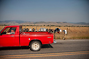Red truck passes a line of postboxes at the entrance to properties in Paradise Valley at Pray, near Livingstone, Montana. The fields are full of golden dried out summer grasses which match the yellow road markings.