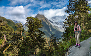 The Routeburn Track, near the Divide in Fiordland National Park, near Te Anau, Southland region, South Island of New Zealand. In 1990, UNESCO honored Te Wahipounamu - South West New Zealand as a World Heritage Area. This image was stitched from multiple overlapping photos. To license this Copyright photo, please inquire at PhotoSeek.com .