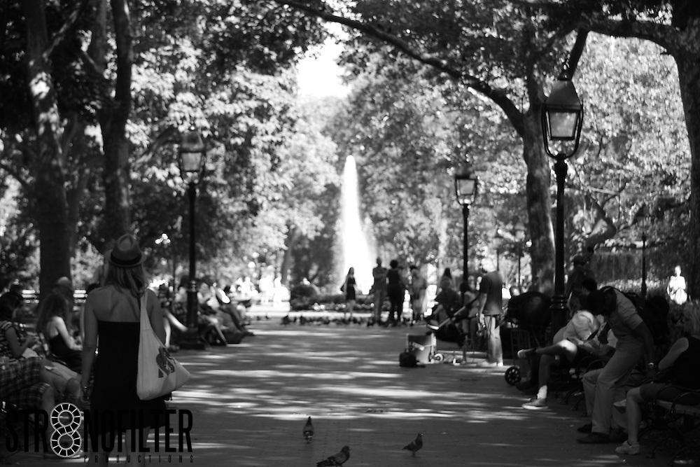 Summers Day Washington Sq. Park
