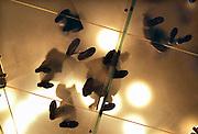 Nederland, Amsterdam, 16-11-2013De applestore. Blik vanaf de begane grond door de glazen trap naar de 1e verdieping.Foto: Flip Franssen/Hollandse Hoogte