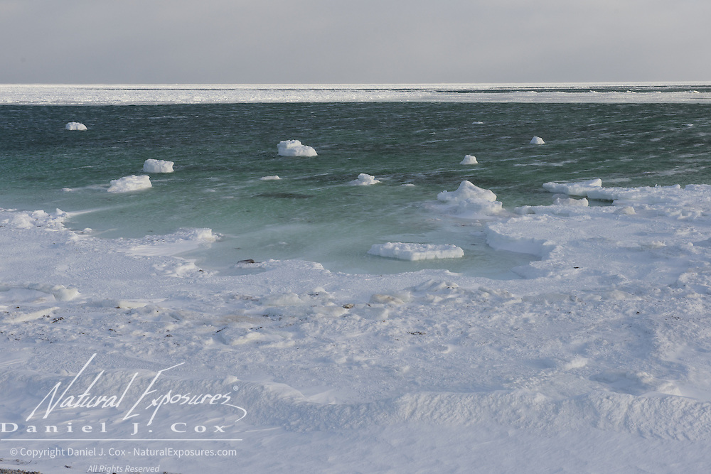Newly forming ice near Cape Churchill, Hudson Bay, Manitoba.