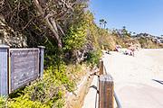 Visitors on the Beach at Treasure Island Beach in Laguna
