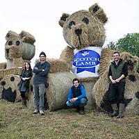 QMS Teddy Bear Band