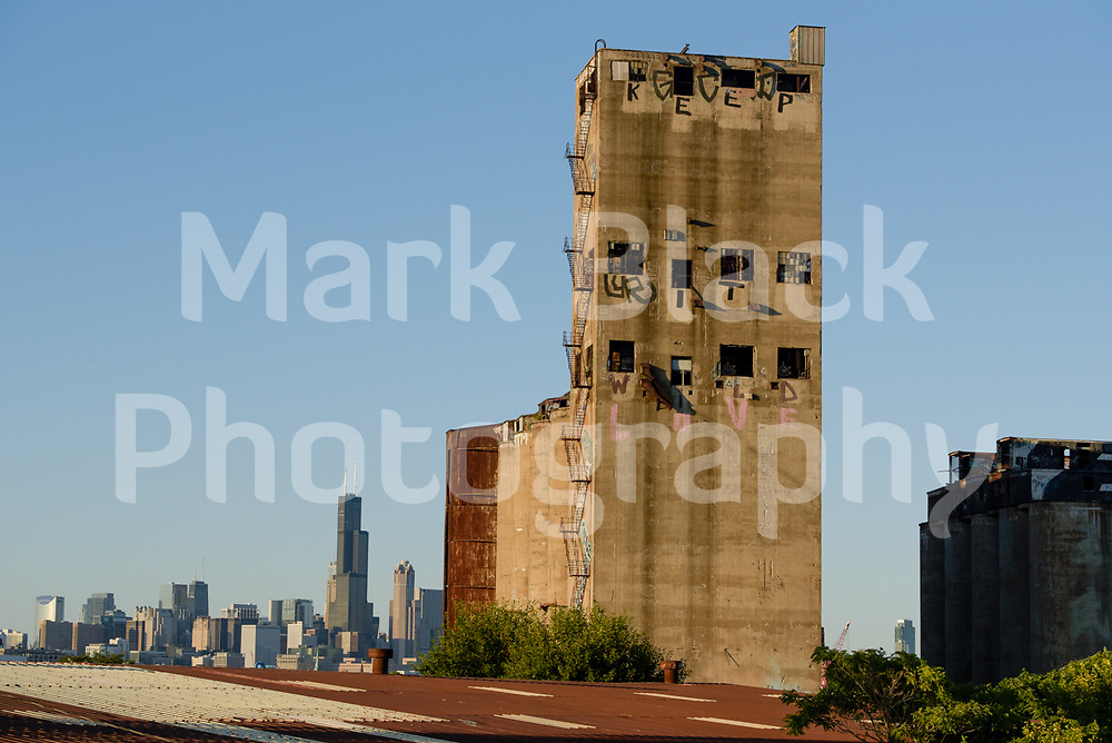 The crumbling Damen Silos are abandoned grain silos now left to rot and have attracted graffiti artists and urban explores along the Chicago River on Chicago on Wednesday, Aug. 19, 2020.  Photo by Mark Black