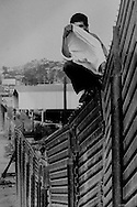 Border jumper plays Peek-a-Boo on wall in San Ysidro, CA.  1993