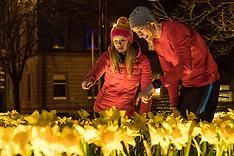 Marie Curie's great daffodil appeal | Edinburgh | 15 March 2017