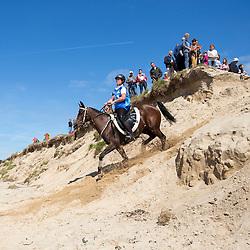 Andrea Smith, (NZL), Glenmore Tariq<br /> Alltech FEI World Equestrian Games™ 2014 - Normandy, France.<br /> © Hippo Foto Team - Leanjo de Koster<br /> 25/06/14