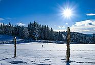Winter & Nature