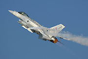 F-16E Desert Falcon Emirates