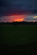 Setting Sun briefly iluminates a gap in rain clouds over fields and forests near Burtnieki, Vidzeme, Latvia Ⓒ Davis Ulands   davisulands.com