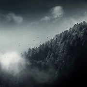 Misty forest in the mountains of the Italian Alps/Lombardia<br /> Prints: https://www.curioos.com/product/canvas/misty-woodlands-2<br /> Redbubble products: http://www.redbubble.com/people/dyrkwyst/works/22350424-misty-woodland?ref=recent-owner