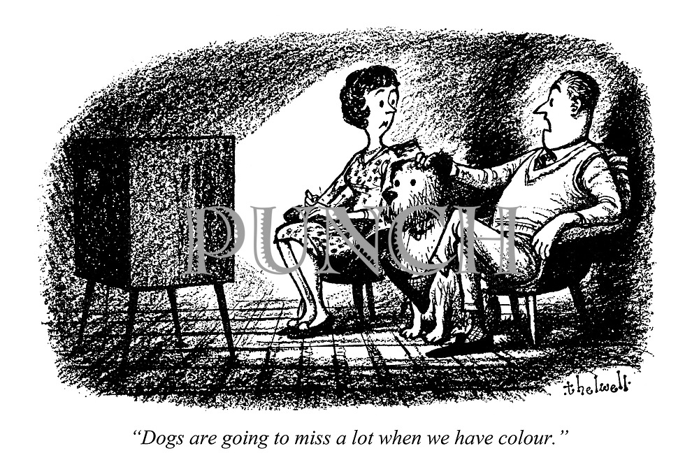 """Dogs are going to miss a lot when we have colour."""