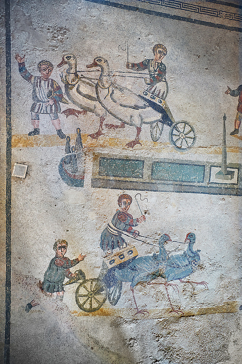 wide shot of the Roman mosaics of the room of the Small Circus depicting Roman boys riding small chariots pulled by birds in a small circus, The Vestibule of The Smnall Circus, room no 41  at the Villa Romana del Casale, first quarter of the 4th century AD. Sicily, Italy. A UNESCO World Heritage Site.<br /> <br /> The Roman mosaic know as the Small Circus at the Villa Romana del Casale depicts a scene of a chariot race from the Circus Maximus in Rome. Two wheeled chariots, driven by children,  are racing around a central Pina (barrier) being drawn by fowl and web footed birds. The four chariots represent the four factions that raced against each other at the Circus and the tunics of the cild charioteers and the birds pulling their chariots are distinguished by the four different colours used by each faction. .<br /> <br /> If you prefer to buy from our ALAMY PHOTO LIBRARY  Collection visit : https://www.alamy.com/portfolio/paul-williams-funkystock/villaromanadelcasale.html<br /> Visit our ROMAN MOSAICS  PHOTO COLLECTIONS for more photos to buy as buy as wall art prints https://funkystock.photoshelter.com/gallery/Roman-Mosaics-Roman-Mosaic-Pictures-Photos-and-Images-Fotos/G00008dLtP71H_yc/C0000q_tZnliJD08