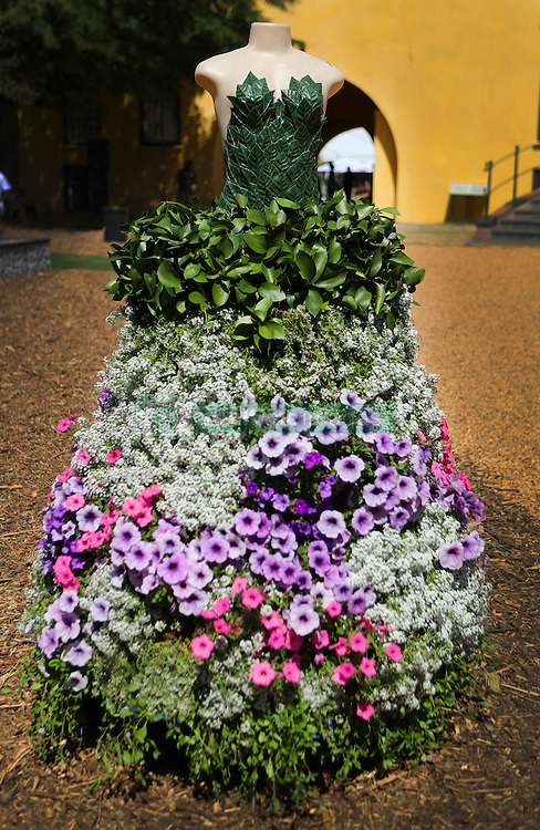 Floral Dress during the Cape Town Flower Show held at the Castle of Good Hope between the 27th and the 30th October 2016.<br /> <br /> Photo by Ron Gaunt/ RealTime Images