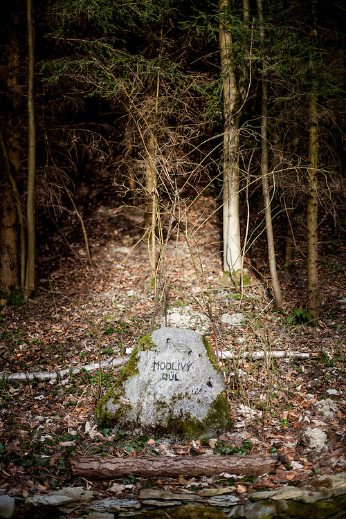 After 1547 when the local church of the Unity od Bretheren had been closed by Jaroslav of Pernstejn and namely in the times of Counterreformation by the Catholic Church (after 1620), here in a valley hidden within a deep forest the members of the Unity of Bretheren convened secretly for the devotional services, to sing old songs of the Bretheren or to read chapters from the carefully hidden Bible. This also is a plac marked with a botanical rarity: Wild rose  bushes without thorns.