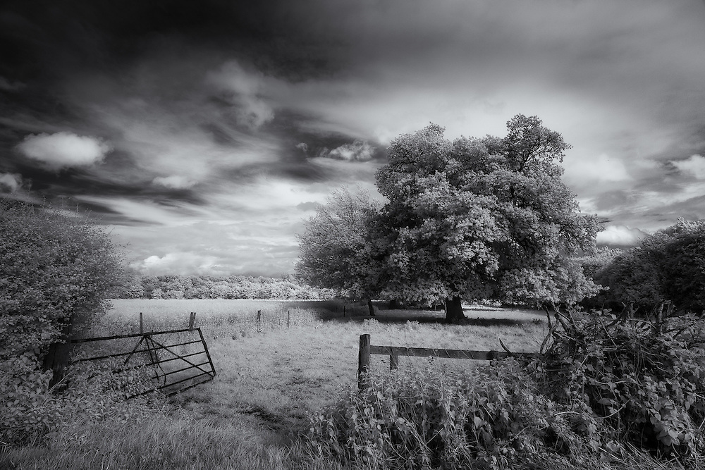 Just looking back through some shots from earlier in the year I didnt get around to processing at the time. This one was from a weekend at my in-laws in Nottinghamshire