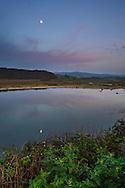 Moon rising in evening over tidal estuary at Pescadero Marsh Natural Preserve, Pescadero, San Mateo County Coast, Caliifornia