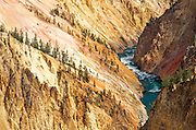 The Yellowstone River and canyon from Grandview Point, Yellowstone National Park, Wyoming USA