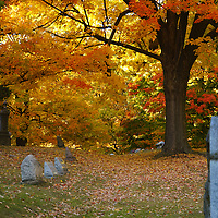 """""""Colorful Rest"""" <br /> <br /> Autumn in a beautiful cemetery in Michigan."""