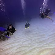 Divers/Scuba