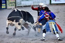 Bull ride, Rodeo Clown, Jackson Hole Rodeo, Jackson Hole, Wyoming