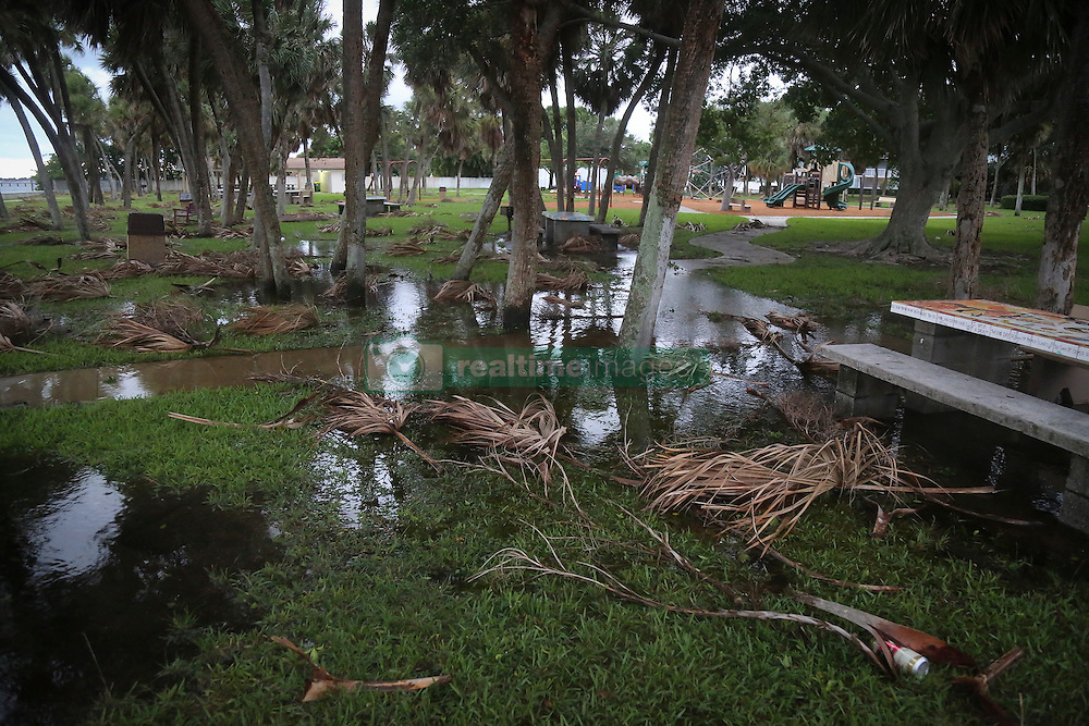 October 7, 2016 - Florida, U.S. - Branches are down and flooding is visible in Lake Worth's South Bryant Park early Friday, October 7, 2016. (Credit Image: © Bruce R. Bennett/The Palm Beach Post via ZUMA Wire)