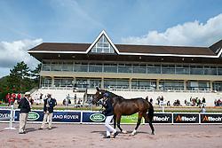 Sandra Karlsson, (SWE), Vouge E, - Horse Inspection Para Dressage - Alltech FEI World Equestrian Games™ 2014 - Normandy, France.<br /> © Hippo Foto Team - Jon Stroud<br /> 25/06/14