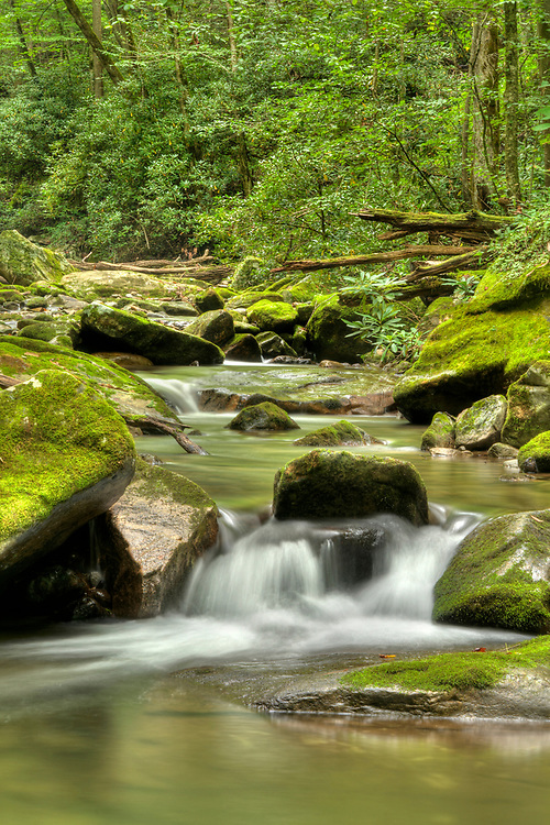 Water cascades around moss-covered rocks at Rocky Fork State Park in Flag Pond, TN on Friday, September 2, 2016. Copyright 2016 Jason Barnette