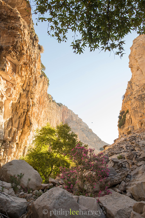 Scenic mountainous landscape with rock formations captured from low angle, Pegeia, Cyprus