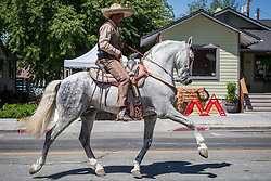June 16, 2018 - Reno, Nevada, U.S - A member of the Perez Dancing Horses group performs during the Reno Rodeo Parade in midtown Reno, Nevada. The Reno Rodeo is a Professional Rodeo Cowboys Association (PRCA) sanctioned sporting event, and one of the top five rodeos in North America. Reno Rodeo is a non-profit organization made up of over 1,000 volunteers. This years rodeo, the 99th annual, runs from June 14-23, 2018. (Credit Image: © Tracy Barbutes via ZUMA Wire)
