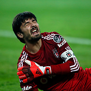 Besiktas's goalkeeper Tolga Zengin during their Turkish superleague soccer match Besiktas between Fenerbahce at Ataturk Olimpiyat Stadium in Istanbul Turkey on Sunday 02 November 2014. Photo by Aykut AKICI/TURKPIX
