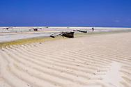 Traditional wooden dhows on Paje Beach at low tide.  Paje, Zanzibar, Tanzania