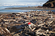 A man sits with his child in a large pile of driftwood at Kalaloch Beach, Olympic National Park, Washington.