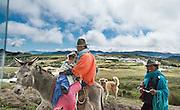 An Ecuadorian woman and baby ride a donkey at Quilotoa, near Zumbahua, in the Ecuadorian Andes.