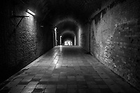 Sarushima Tunnel of Love - Sarushima is Tokyo Bayís only uninhabited and natural island and is full of history. It was once a barrier fortress that protected Tokyo Bay.  It was forbidden for civilians to land on during its military use days. The island still has remnants of that period like barracks and gun batteries on the island.  Thick French brick walls of the abandoned fortress buildings make it a popular spot for abandoned site enthusiasts. The abandoned fortress was the inspiration for the ruins in the Studio Ghibliís movie Castle in the Sky.  Sarushimaís mysterious atmosphere will enchant anime fans because of this.  Although the island is now no more than a relaxing spot for fishermen and tourists, its strategic importance had been known since the Tokugawa Shogunate built military fortifications on the island which still remain today.  During World War II the strategic importance of the island was used as the Japanese built artillery points around the older structures. Brick-lined tunnels and walls of fortresses still remain from generations past, though they are now overgrown with plants, creating an unusual blend of history and nature.  Sarushima translates as ìMonkey Islandî.  Its nickname comes from a legend that says the priest Nichiren traveling by boat from Kamakura to Chiba when a storm hit.  A monkey suddenly appeared on the bow of his boat, leading him to the island for safety. Today there are no monkeys, but lots of humans especially on weekends in summer.