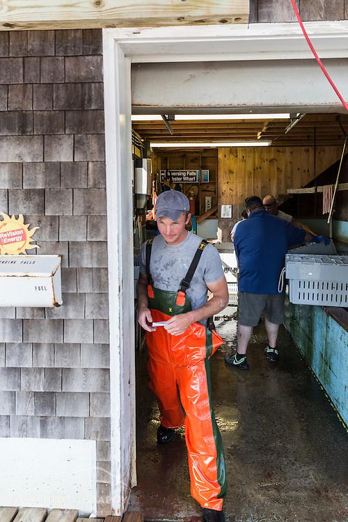 """Captain Matt Clemmons (""""Mean Kathleen"""") at Potts Harbor Lobster in Harpswell, Maine."""