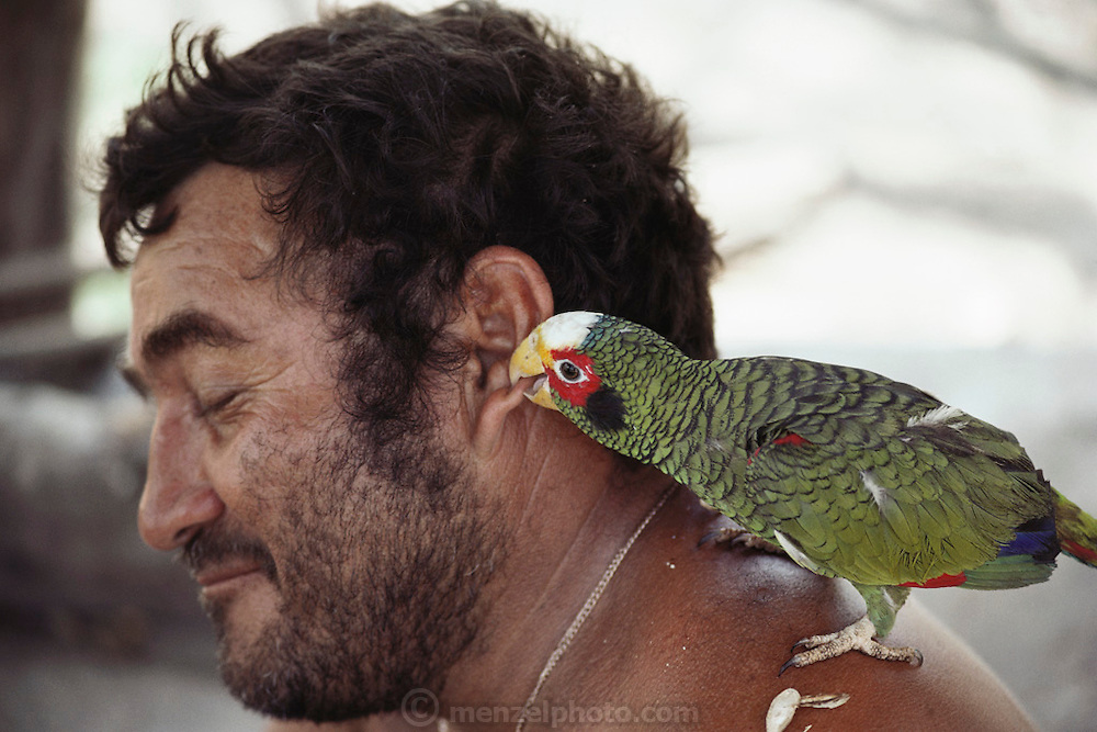 Antonio Suarez's parrot bites his ear at a rest stop on the road to Chetumal, Mexico.