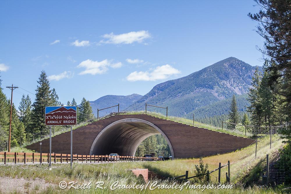 """Animals' Bridge"" wildlife overpass on the Flathead Indian Reservation, U.S. Hwy 93, Montana."