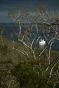 La Pinta cruise Ship anchored in Tagus Cove, Isabella Island. Galabagos, Ecuador, South America