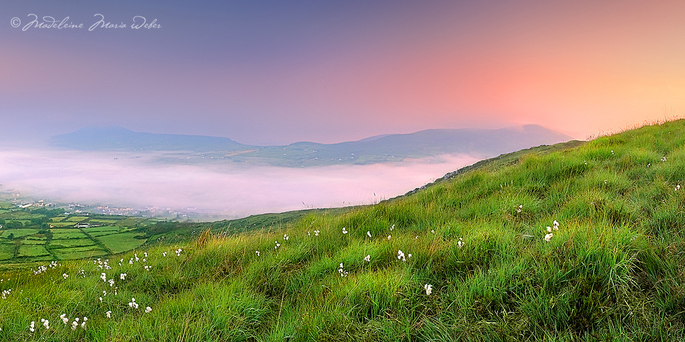 Scenic View and misty Sunrise Panorama from Beentee Mountain overlooking Cahersiveen covered in fog, Iveragh Peninsula Southwest Kerry Ireland / ch236