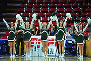 March 18, 2016; Tempe, Ariz;  The Green Bay Phoenix cheerleaders perform during a game between No. 7 Tennessee Lady Volunteers and No. 10 Green Bay Phoenix in the first round of the 2016 NCAA Division I Women's Basketball Championship in Tempe, Ariz.