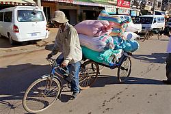 Man Peddling Bike Hauling Large Bags