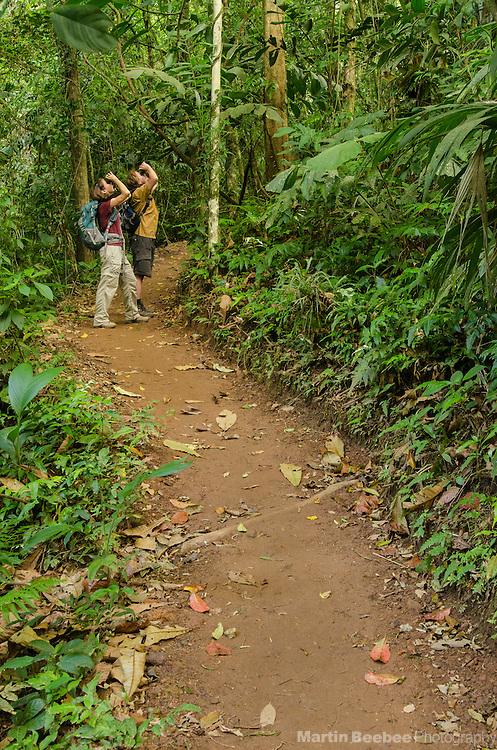 Birding in the Arenal area near El Castillo, Costa Rica