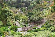 Japanese Friendship Garden at Balboa Park San Diego