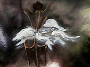 Standing nude ballerina as seen from behind. Photograph of an Acrylic painting. Property release available