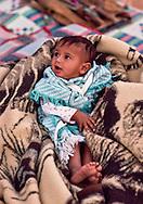 An Alamrah baby in the Dahana Sands in the Eastern Provice of Saudi Arabia