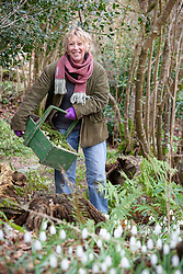 Carol Klein with a trug of corydalis and primroses ready to plant out.