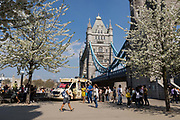 People walk in the sunshine next to blossom trees in full bloom on the South Bank next to Tower Bridge during hot and sunny weather on April 20, 2018 in London, England. Yesterday the United Kingdom experienced the hottest day in April since 1949, with temperatures reaching 27.9C 82.2F in London.