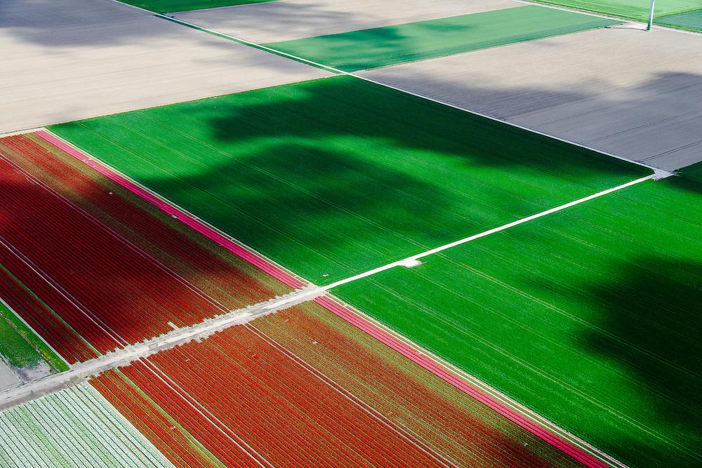 Nederland, Flevoland, Zeewolde, 07-05-2015; Zuidelijk Flevoland, tussen Zeewolde en Almere. Bloembollenvelden met tulpen en hyacinten en schaduwen van wolken.<br /> Southern Flevoland, Bulb fields of tulips and hyacinths.<br /> luchtfoto (toeslag op standard tarieven);<br /> aerial photo (additional fee required);<br /> copyright foto/photo Siebe Swart